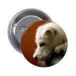 Cute Terrier Puppy Pins