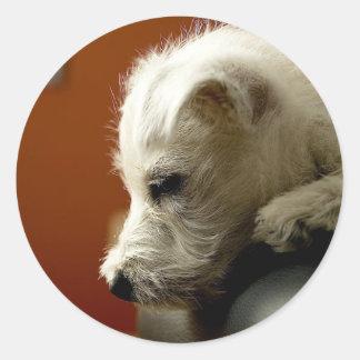 Cute Terrier Puppy Round Stickers