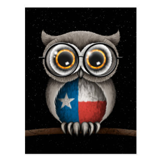 Cute Texas Flag Owl Wearing Glasses Postcard