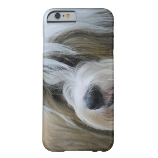Cute Tibetan Terrier Dog Barely There iPhone 6 Case