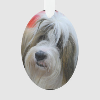 Cute Tibetan Terrier Dog Ornament