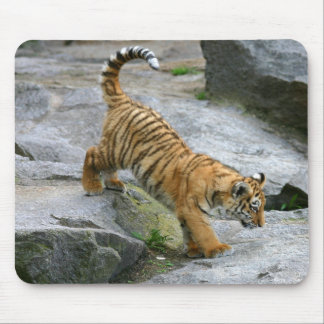 Cute Tiger Cub Mousepad