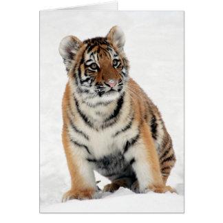 Cute tiger cub sitting in the snow blank custom card