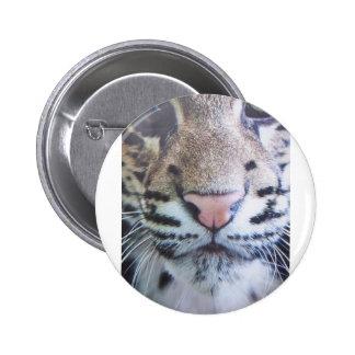 Cute Tiger Eyes 2 Inch Round Button