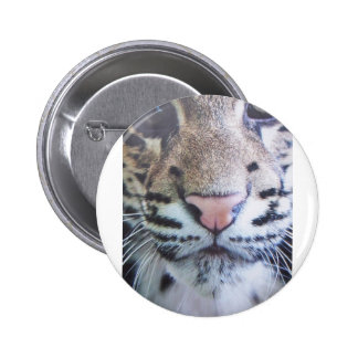 Cute Tiger Eyes Button