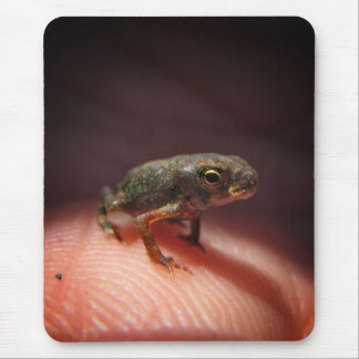 Cute Tiny Baby Toad / Tadpole Mouse Pad