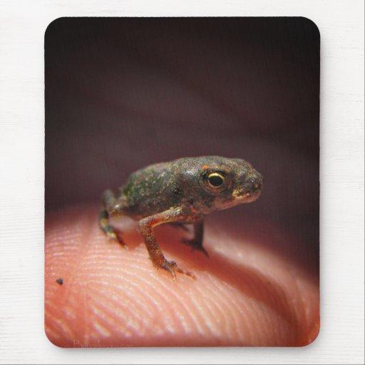 Cute Tiny Baby Toad / Tadpole Mousepad