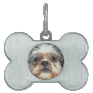 Cute Toy Dog-lover Gift Pet Tag