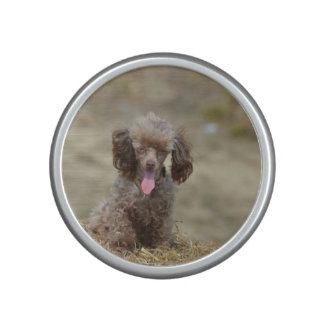 Cute Toy Poodle Bluetooth Speaker