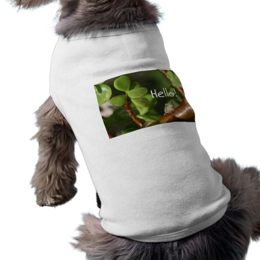 Cute tree frog says hello! Amphibian style! Pet Clothes