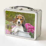 """Cute Tricolor Beagle Dog Puppy Pet in a Milk Churn Metal Lunch Box<br><div class=""""desc"""">A young puppy-eyed tricolor Beagle puppy is sitting in a milk churn admist pink flowers The Beagle is a scenthound dog breed with a gentle temperament. A cute doggy photo taken by Katho Menden. This metal lunch box is a gift idea for dog lovers. http://www.zazzle.com/kathom_photo - If you are seeing...</div>"""