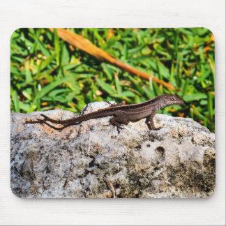 Cute Tropical Lizard Mouse Pad