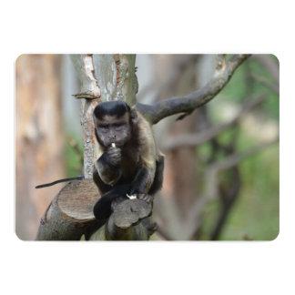Cute Tufted Capuchin Monkey 5x7 Paper Invitation Card