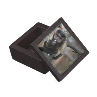 Cute Tufted Capuchin Monkey Premium Jewelry Box