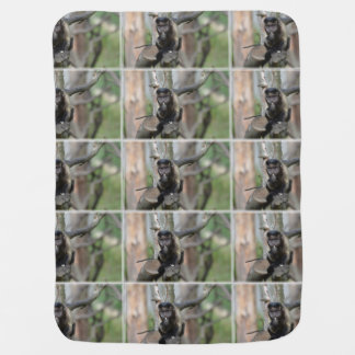 Cute Tufted Capuchin Monkey Swaddle Blanket