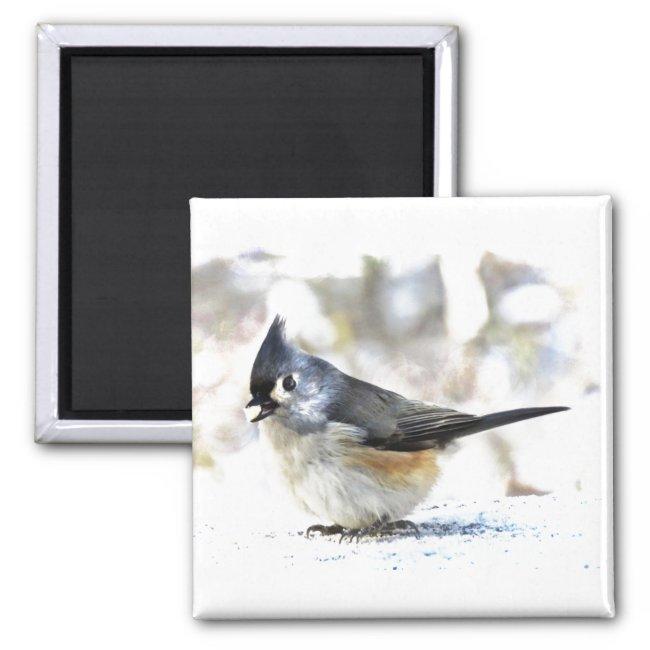 Cute Tufted Titmouse Bird Magnet
