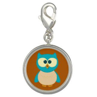 Cute Turquoise Brown Owl Charm Bracelet