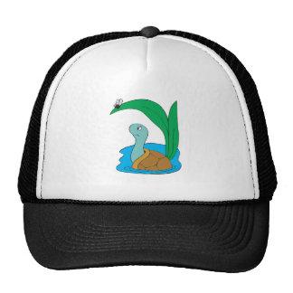 cute turtle in water hat
