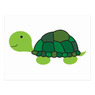 Cute Turtle Postcard