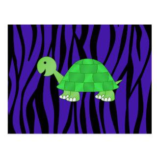 Cute turtle purple zebra stripes postcard