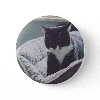 Cute Tuxedo Cat Button