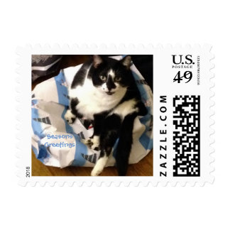 Cute Tuxedo Cat Present Christmas Stamps