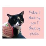 Cute Tuxedo Cat Think of Peace Postcards