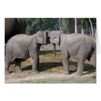 Cute Baby Elephant Greeting Cards Zazzle