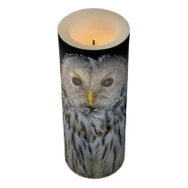 Cute ural owl flameless candle