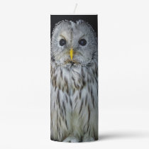 Cute ural owl pillar candle