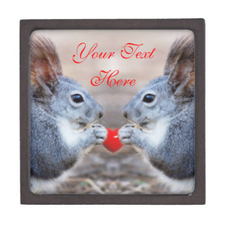 Cute Valentine Squirrels Customized Gift Box
