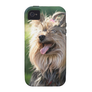 Cute Very Hairy Doggy- Yorkshire Terrier Case-Mate iPhone 4 Case