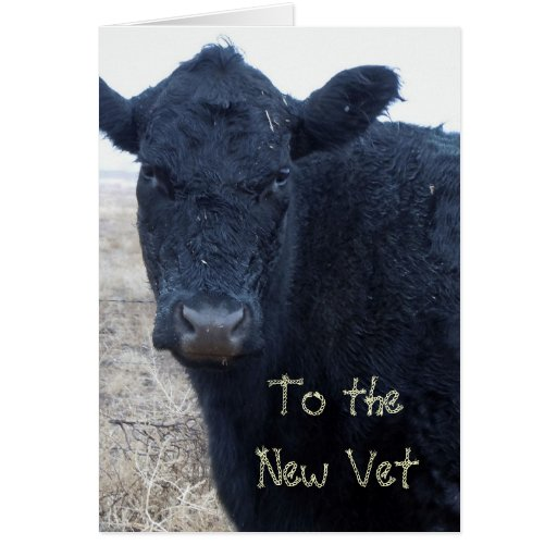 Cute Vet Graduation Congratulations Ranch Farm DVM Cards