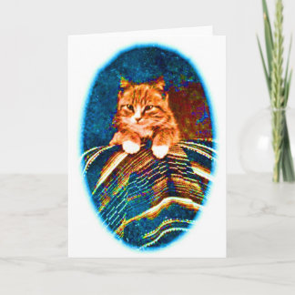 CUTE VINTAGE  CAT KITTEN  WITH RUG CARD