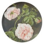 Cute Vintage Flower Study, Tischbein Party Plate