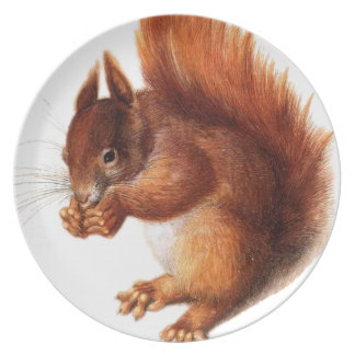 Cute Vintage Red Squirrel Plate