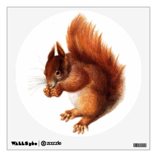 Cute Vintage Red Squirrel Wall Decal