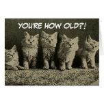 Cute Vintage Retro Kittens Happy Birthday Card