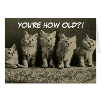 Cute Vintage Retro Kittens Happy Birthday Card