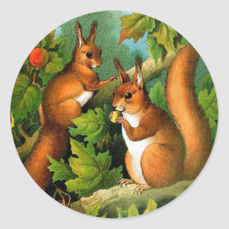 Cute Vintage Squirrel Painting Classic Round Sticker