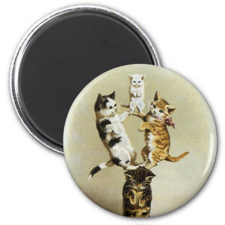 Cute Vintage Victorian Cats Kittens Playing, Humor Magnet