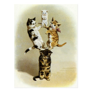 Cute Vintage Victorian Cats Kittens Playing, Humor Postcard