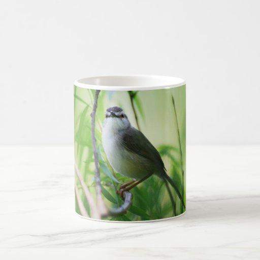 Cute Wagtail bird Coffee Mug