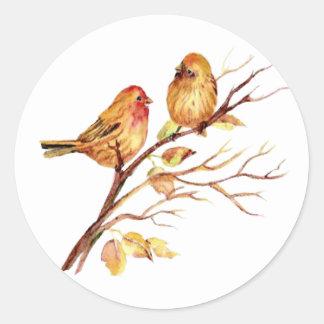 Cute Watercolor Bird Couple on Tree Branch art Classic Round Sticker