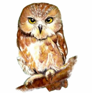Cute Watercolor Saw Whet Owl, Bird, Animal Standing Photo Sculpture