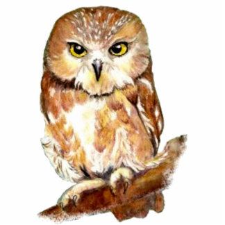 Cute Watercolor Saw Whet Owl, Bird, Animal Statuette