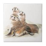 "Cute Watercolor Seals Animal Ceramic Tile<br><div class=""desc"">Cute Watercolor Seals Animal</div>"