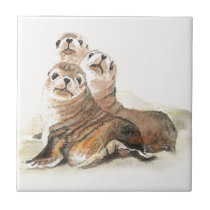 Cute Watercolor Seals Animal Ceramic Tile