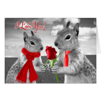 Cute Wedding Anniversary Woodland Squirrel Love Card