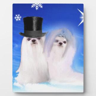 Cute wedding dog portrait under blue sky plaque